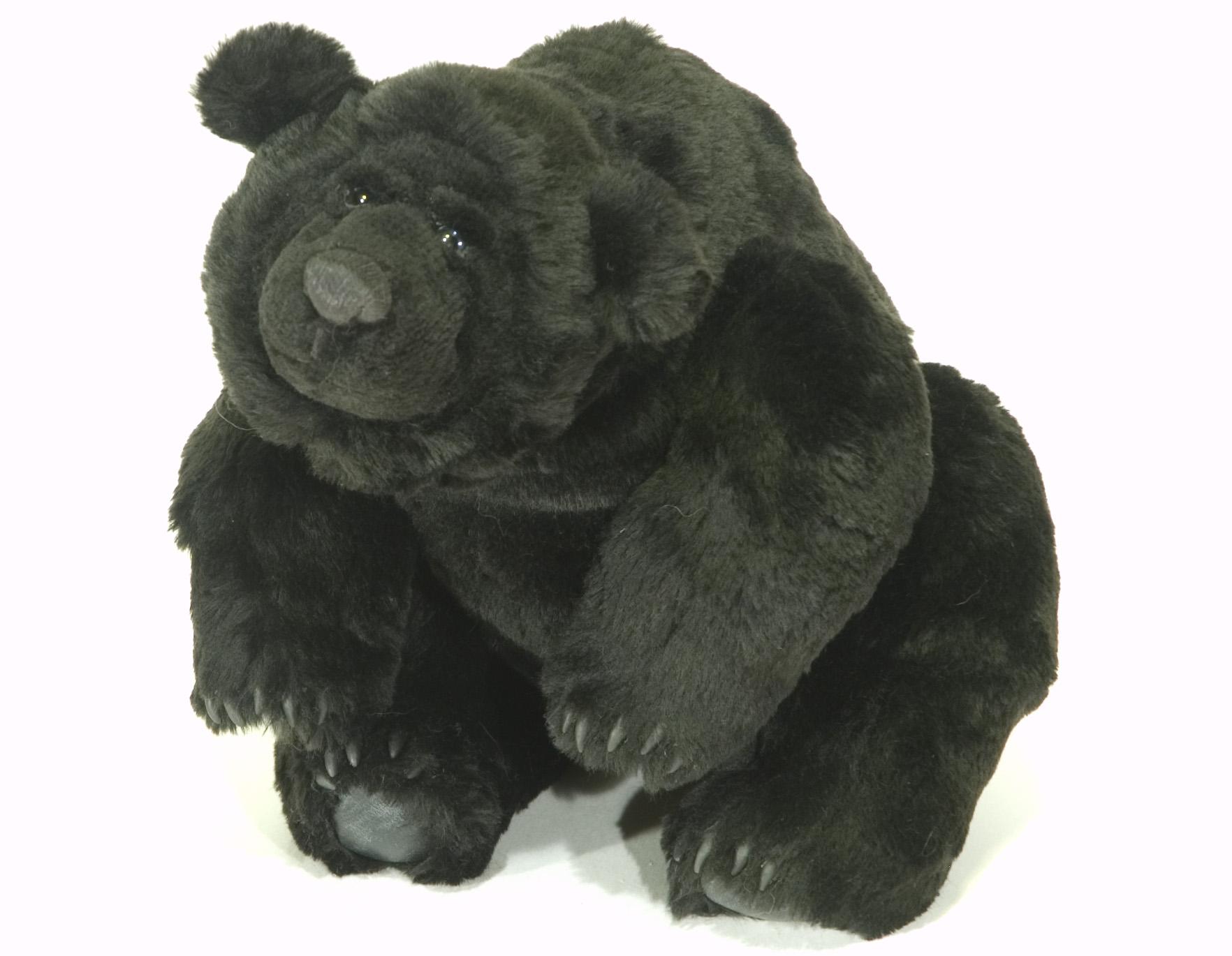 Richard bear