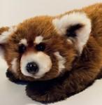 Lapusya (Seva), Red Panda.