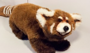 Lapusya (Seva), Red Panda. Mint-Bird (2012)