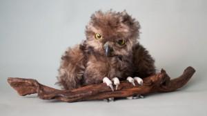 Sofya (owl). Mint-Bird (2012).