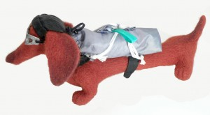 Dachshund with parachute (dog). Mint-Bird (2011)
