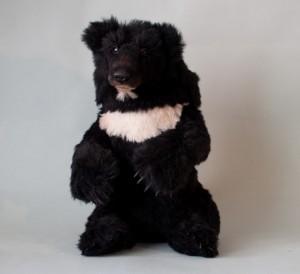 Pierre bear. Mint-Bird.