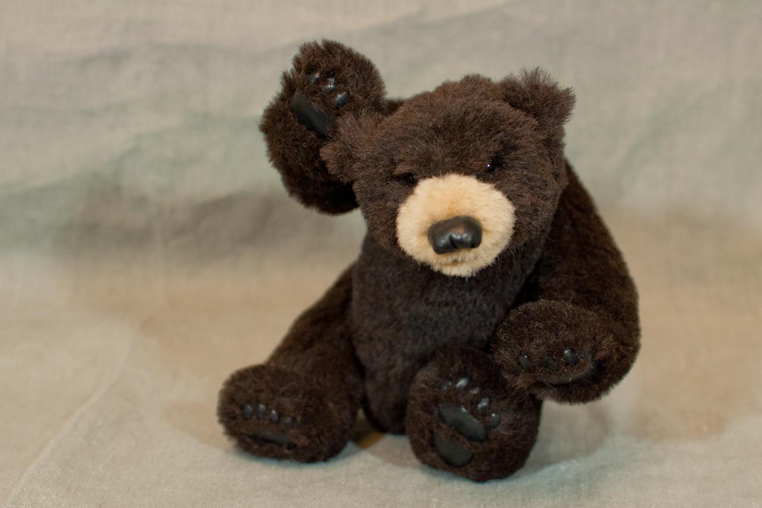 teddybär total 2017