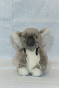 Gekk.Koala by Mint-Bird. 2015